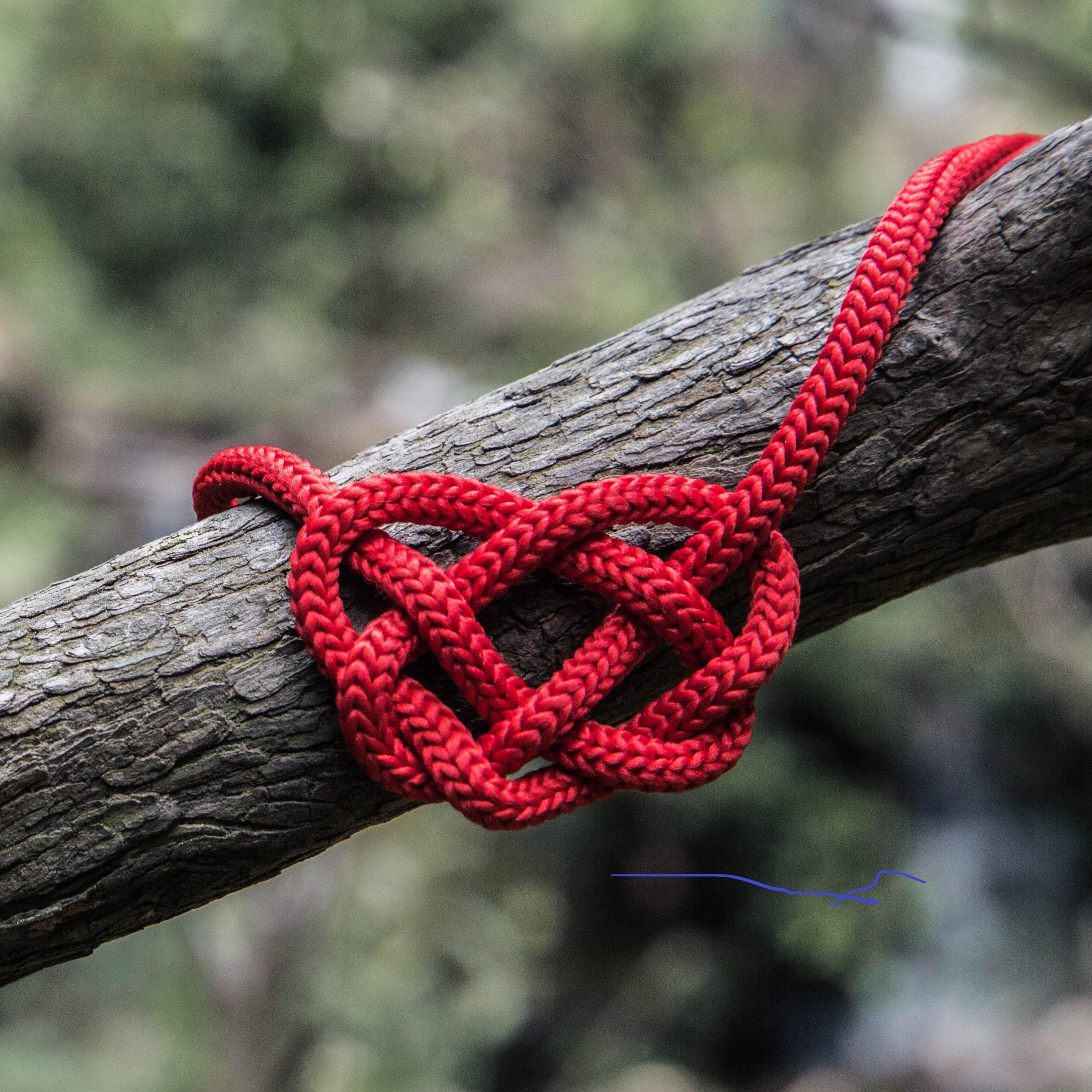 לב אוהב 1